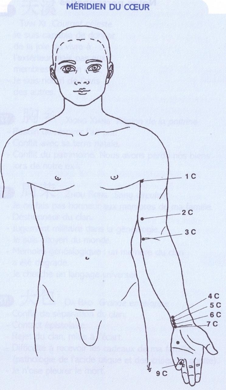 Pour ceux qui veulent en savoir plus sur ces points du corps qui nous parlent de nous -voici nos sources :