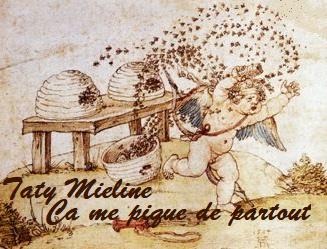Le thème s'inspire d'une fable de l'Antiquité grecque : un épisode des Idylles du poète bucolique Théocrite (IIIe siècle avt JC -mais ce chant XIX est parfois attribué à un pseudo-Théocrite). On y raconte que Cupidon/Eros/Amour (dieu du désir) vola du miel à des abeilles qui le piquèrent. Il se plaignit alors à sa mère Aphrodite/Vénus (déesse de l'amour terrestre) qu'il était injuste qu'une si petite créature (l'abeille) provoque autant de douleur. A quoi Vénus lui répond que lui aussi, Cupidon, était petit, mais que ses flèches de l'amour pouvaient, elles aussi, faire très mal. L'amour donc est à la fois douceur sucrée comme le miel (quand il est spirituel et platonique), et amertume et douleur brûlante (quand il est physique et terrestre).