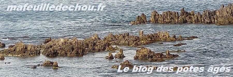 JOURNAL LA CHOUETTE