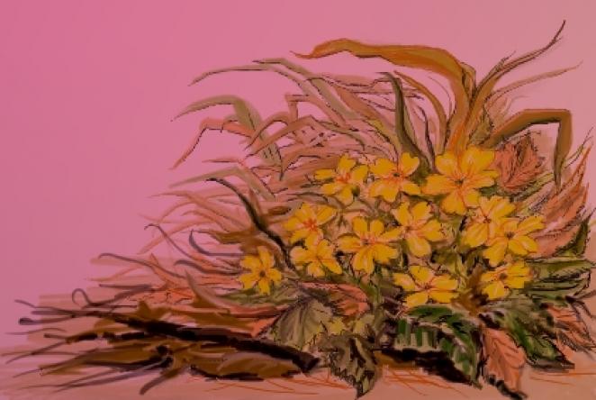 le printemps tout en fleur d 39 amandier journal la chouette. Black Bedroom Furniture Sets. Home Design Ideas